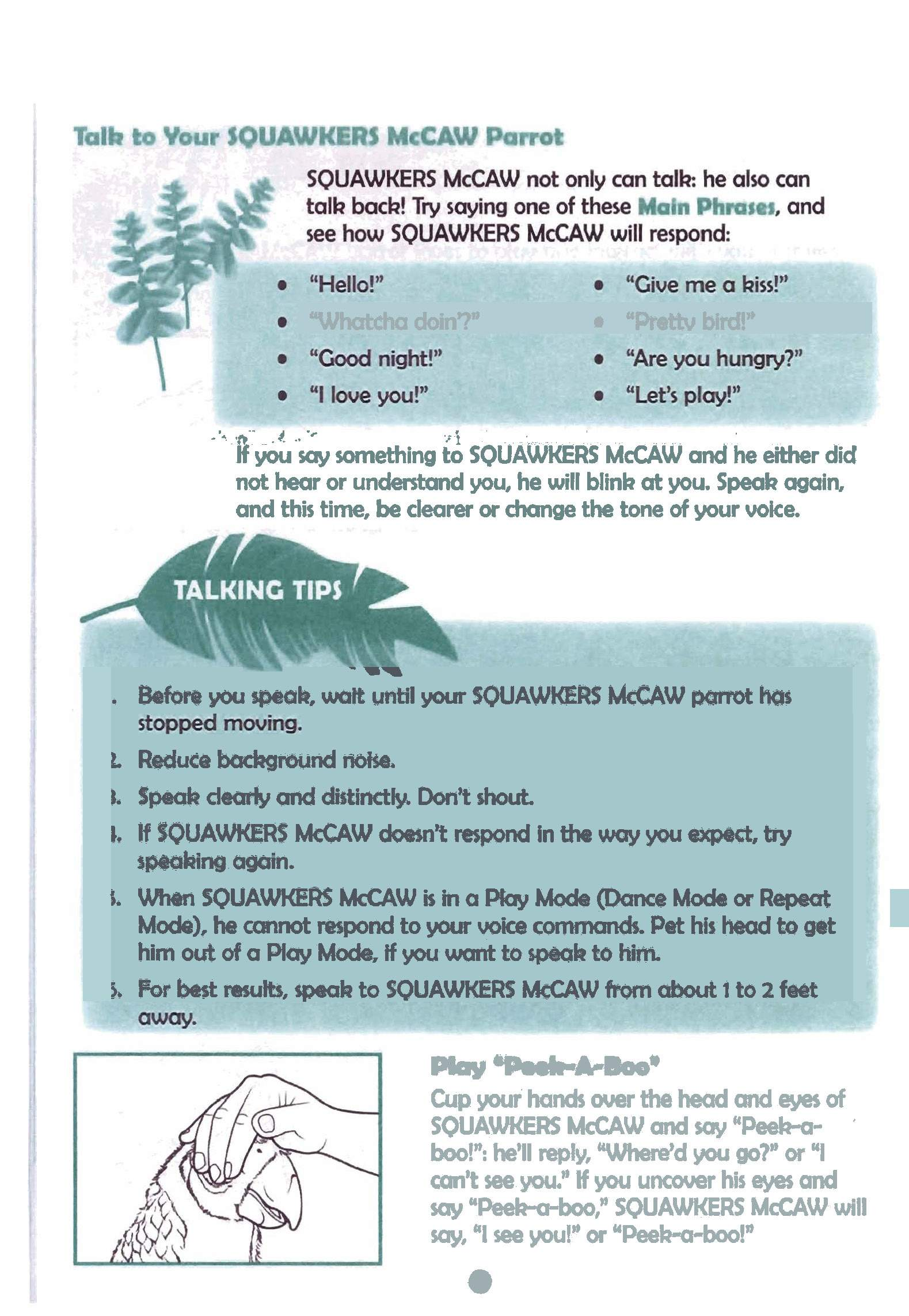 squawkers mccaw instruction manual